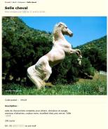 Capture d'écran 2012-07-18 à 14.36.23